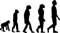 evolution-jpeg